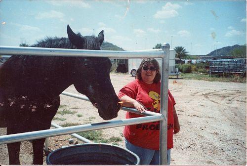 Horse Ranch - Phoenix, Az